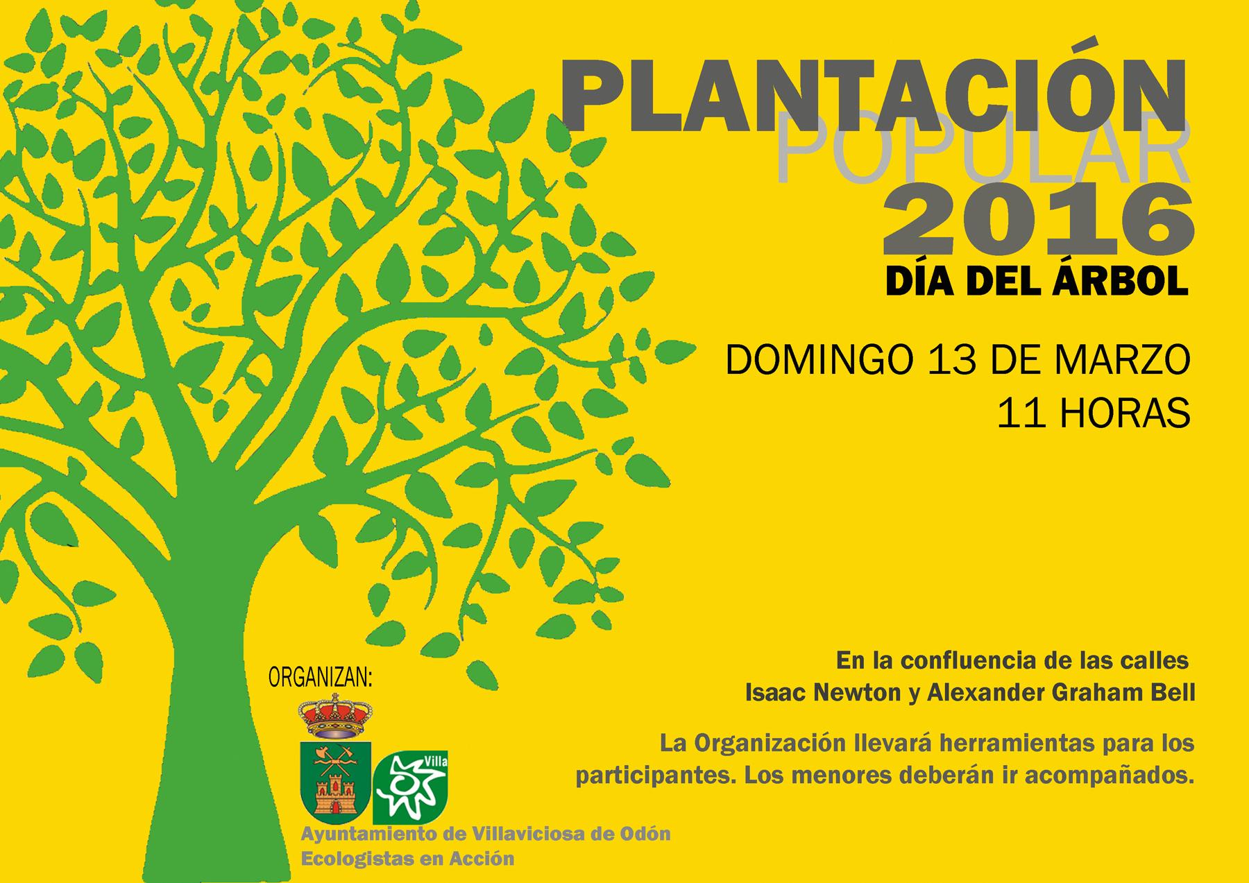 Los árboles De La Plantación Popular 13 De Marzo Llevarán Los